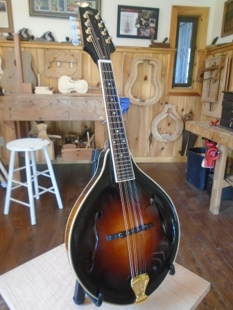 Instruments for sale   Macica